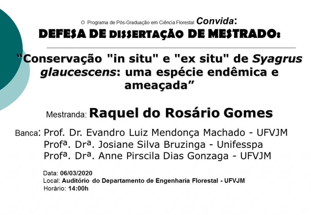 cartaz defesa Raquel Gomes