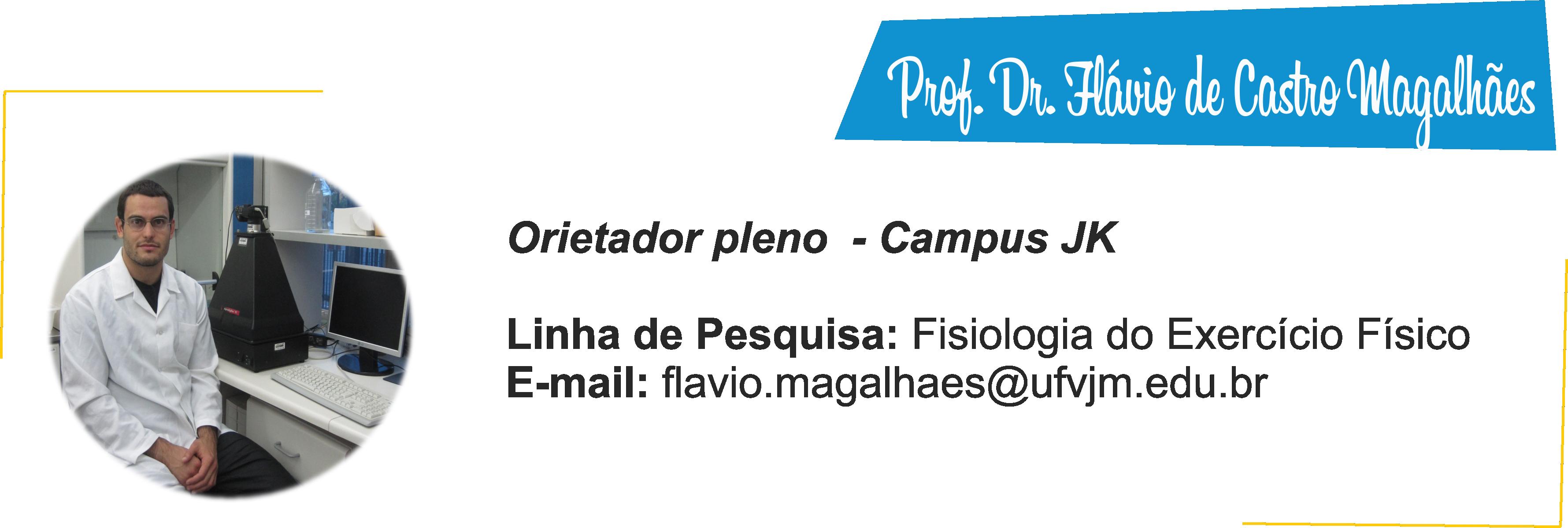 Flávio de Castro Magalhães